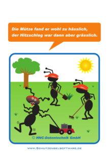 Arbeitsschutz-Comics mit Ameisen_HNC-Datentechnik_2017_01_Motiv Hitzschlag